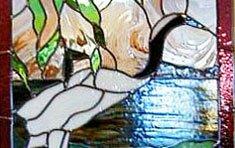 Swan & Water Lily | Belmont (MA)